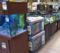 Aquarium department