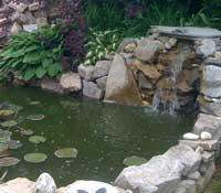 Pond department